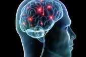 SENIOR CITIZENS AND CAREGIVERS LEARN HOW SYNAPSES DIE IN ALZHEIMER'S PATIENTS