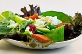 THE MACROBIOTIC LIFESTYLE AN ASPECT OF THE LATEST PALEO DIET CRAZE